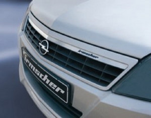 Radiator grille insert (stainless-steel, up to MY 06)